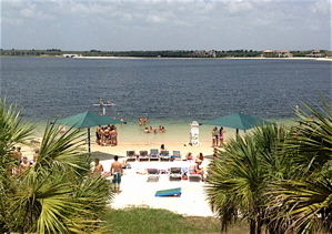 This is the view from FGCU forward Chase Fieler's dorm room window. The beach is calling...