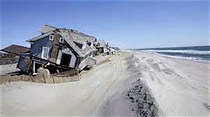 Sandy 4