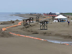 The beach cleanup effort in Grand Isle, LA during the BP spill.